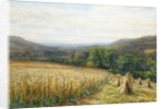 Harvest Time near Ashburton, 1884 by Edmund George Warren