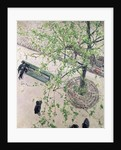 The Boulevard Viewed from Above, 1880 by Gustave Caillebotte