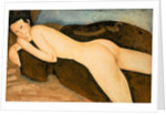 Reclining Nude from the Back 1917 by Amedeo Modigliani