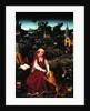 St. Jerome and the Lion by Hans Leonard Schaufelein