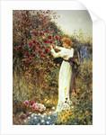 Roses, 1867 by Thomas James Lloyd