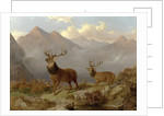 Stags And Hinds In A Highland Landscape, 1864 by John Frederick Herring Jnr