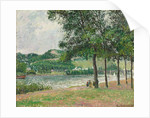 The Cours-la-Reine at Rouen, Overcast by Camille Pissarro