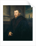 Portrait of a gentleman by Jacopo Robusti Tintoretto