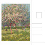 An orchard in bloom by Wynford Dewhurst