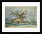 A Landscape with an Old Oak Tree by Joseph Mallord William Turner