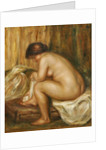 After the Bath, c.1900 by Pierre Auguste Renoir