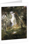 Forest Glade, Santa Barbara, 1918 by Thomas Moran