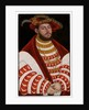 Portrait of John Frederick I, Elector of Saxony, half-length by Lucas the Elder Cranach