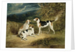 The Duke of Rutland's Hounds with Belvoir Castle in the Distance, 1828 by Henry Perlee Parker