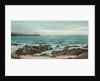 A rocky coastline by David James