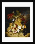 Peaches, Grapes, a Melon, Convulvuli and Other Flowers in a Landscape by Ange-Louis-Guillaume Lesourd-Beauregard