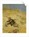 A Cat Basking in the Sun, 1884 by Bruno Andreas Liljefors