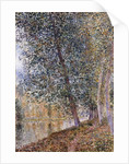 Autumn, the Banks of the Loing; L'Autumne, Bords du Loing, 1880 by Alfred Sisley