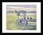 The Harvest of Peas, 1887 by Camille Pissarro