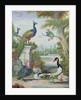 Exotic Birds and Domestic Fowl in a Picturesque Park, early 18th century by Jakob Bogdany
