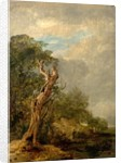 The Withered Tree by William Collins