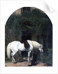 White Horse and Retriever by Alfred Hichens Corbould
