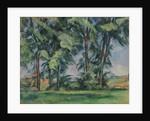 Tall Trees at the Jas de Bouffan, c.1883 by Paul Cezanne