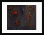 Faerie Garden by Jane Deakin