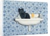 My Bathroom Cat by Ditz Ditz