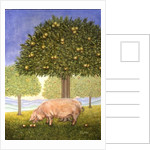 Left Hand Orchard Pig by Ditz Ditz