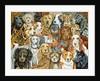 Dog Spread, 1989 by Ditz Ditz