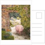 The Convent Garden Pig by Ditz Ditz