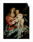 The Madonna and Child, c.1630-32 by Anthony van Dyck