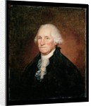 George Washington 1795 by Rembrandt Peale