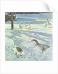 Snowfeeders by Timothy Easton