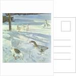 Snowfeeders by Timothy Easton