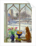 Snow Shadows and Cat by Timothy Easton