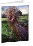 Bearded Bush by Timothy Easton