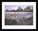 Iris Field and Two Cottages by Timothy Easton