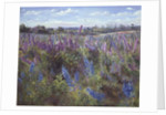 Delphiniums and Poppies by Timothy Easton