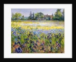 Irises and Two Fir Trees by Timothy Easton