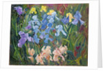 Irises: Pink, Blue and Gold by Timothy Easton