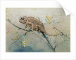 Chameleon, 1901 by Edwin John Alexander