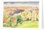 No.64 Autumn, Beaufays, Liege, Belgium by Izabella Godlewska de Aranda