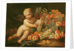Putto with Grapes, Apples, Peaches and Other Fruit by Il & Brueghel Abraham Borgognone
