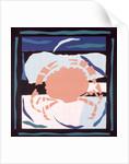 Crab by John Wallington