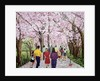 Beautiful Bright Spring Day, 1994 by Komi Chen