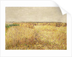 Corn Fields in front of a Chain of Sand Dunes by Paul Baum