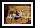 The Circus Rider, 1865 by Johann Jakob Eduard Handwerk