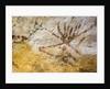 Lascaux cave painting, Bordeaux, France by Unknown