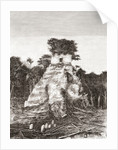 Tikal, Guatemala, Central America: The Temple of the Jaguar by Spanish School