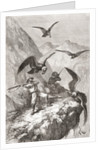 Édouard François André and companion being attacked by condors near Calacali, Pichincha Province, Ecuador by Spanish School