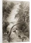 Turc Waterfall, County Killarney, Ireland by William Henry Bartlett