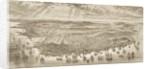 Bird's-Eye View of San Francisco, 1875 by English School